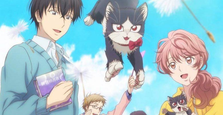 Doukyonin wa Hiza Tokidoki Atama no Ue 720p x265 encoded anime download